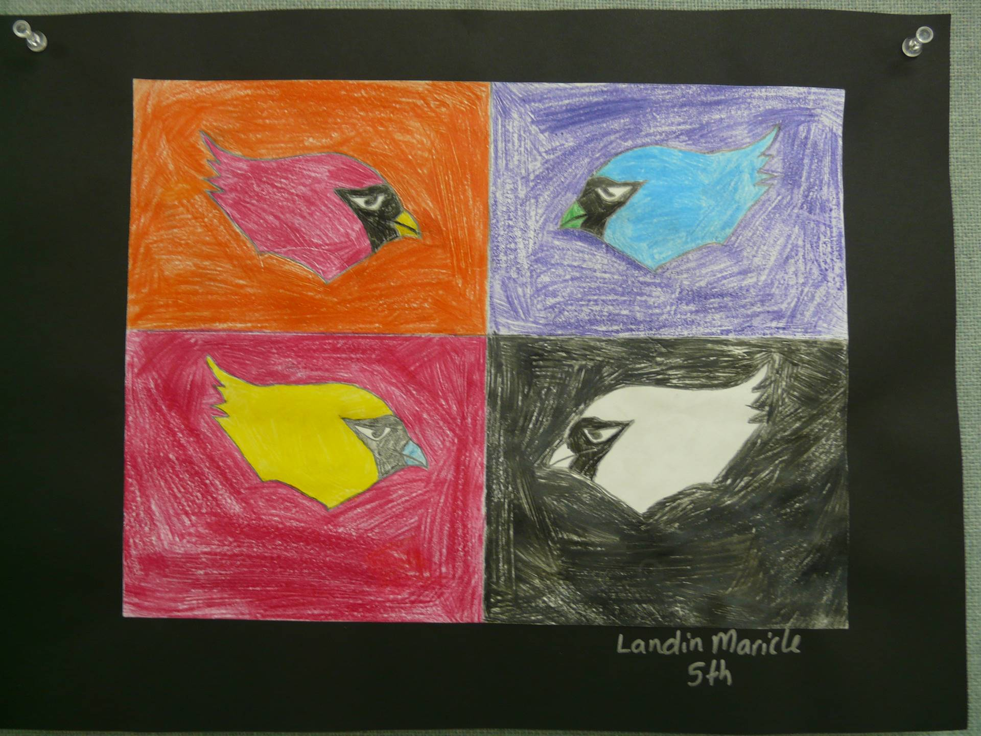 4 different color heads of a bird in boxes